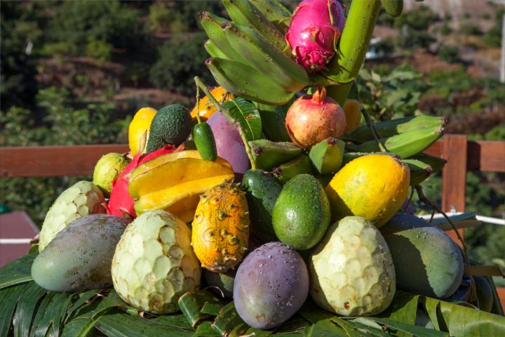 degustacion-frutas-subtropicales-portada