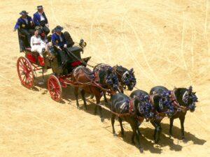 carruajes corpus-Granada
